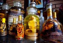 A legszokatlanabb alkoholos italok